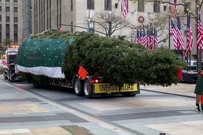 De Blasio urges people to stay away from Rockefeller Christmas tree