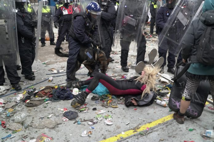 Woman at illegal rave in the UK mauled by police dog